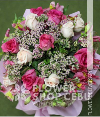 1 Dozen Baby Pink and Pink Roses