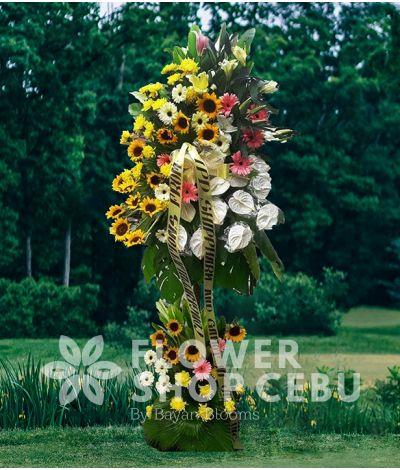 Inaugural Flower - Atropos