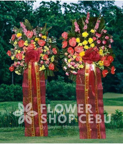 Inaugural Flower - Zevgos